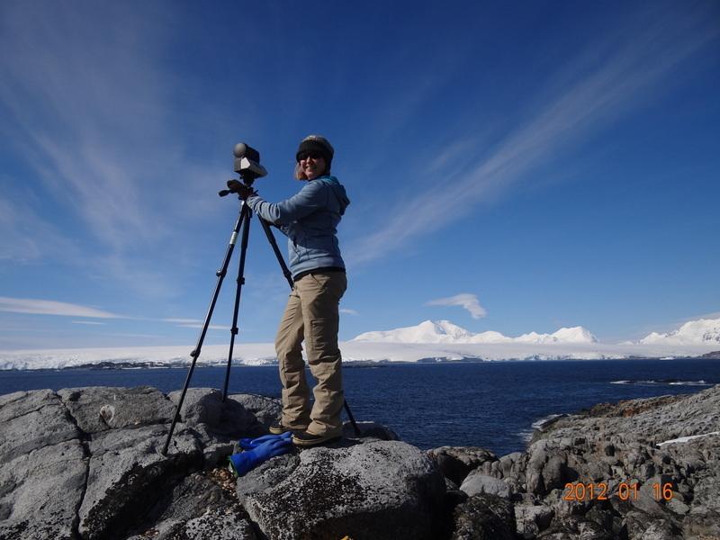 Belgica Antarctica Information Called Belgica Antarctica